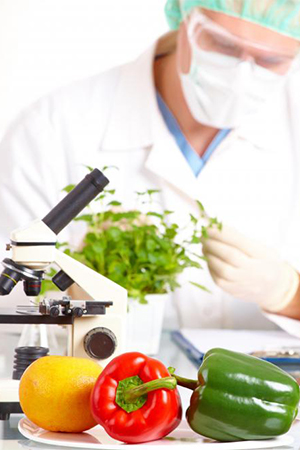 Food Science & Nutrition Research