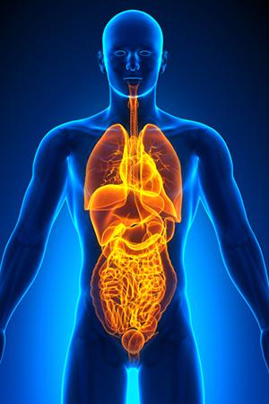 Trends in Internal Medicine